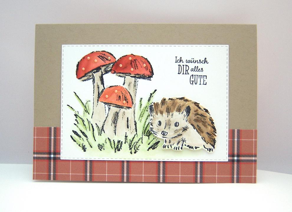Geburtstag - Geburtstagskarte -Pilze Igel- Bild 1