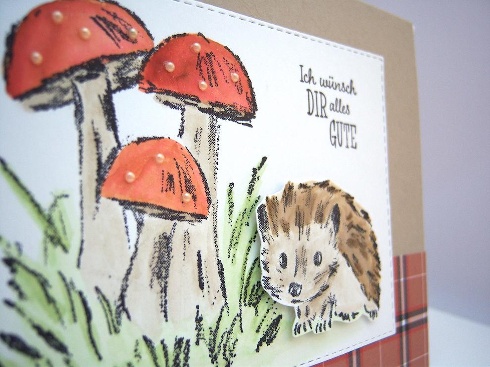 Geburtstagskarte -Pilze Igel- Bild 2