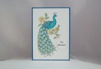 Karte zur Hochzeit Pfau coloriert