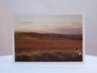 Postkarte Blick auf die Felder 1