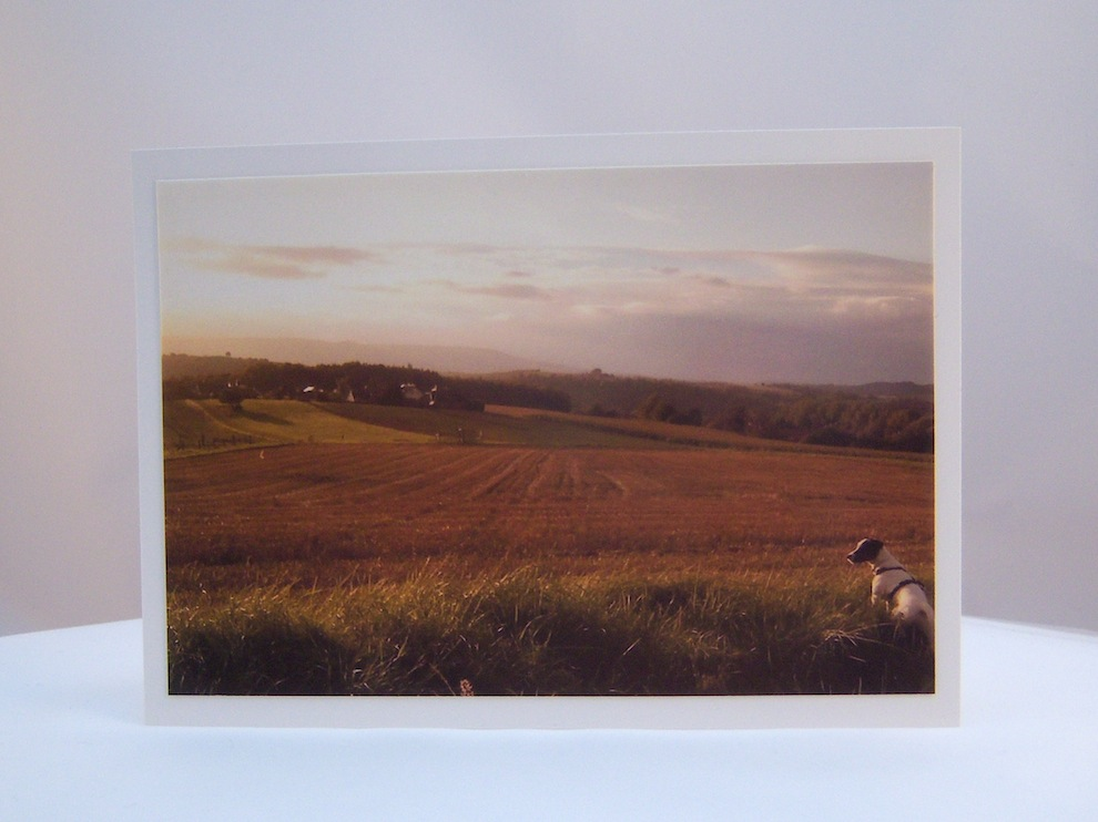 Sonstiges - Postkarte Blick auf die Felder 1