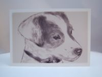 Postkarte Zeichnung kleine Terrierdame 1