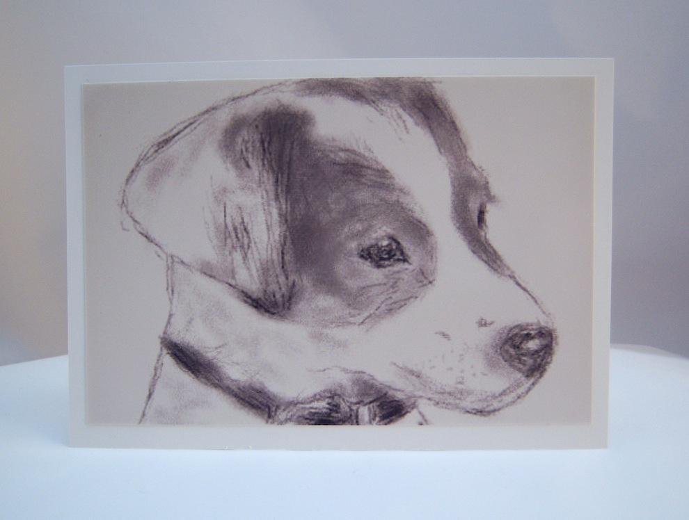 Sonstiges - Postkarte Zeichnung kleine Terrierdame 1