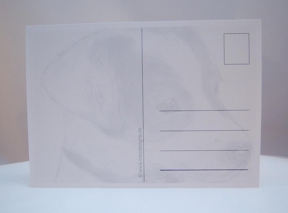 Postkarte Zeichnung kleine Terrierdame 2